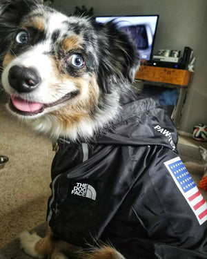 Pupreme Hype Dog Coat