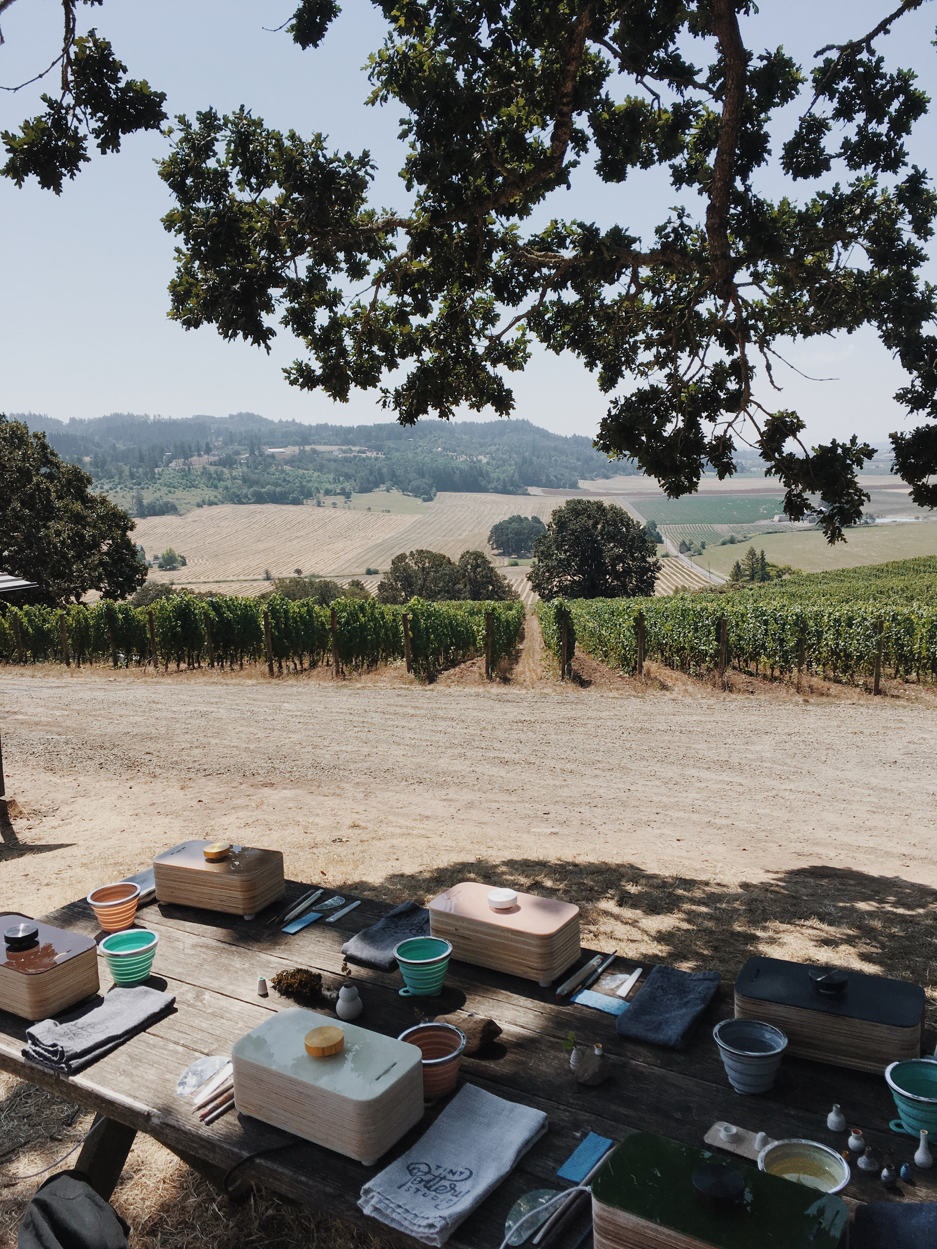 Intimiate Sessions with a Winery