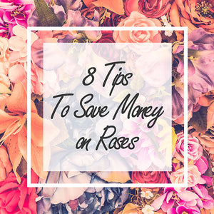 8 Tips to Save Money on Roses