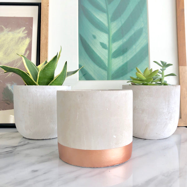 Cement Cylinder Planter Pot with Rose Gold Stripe