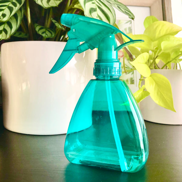Little Blue Spray Bottle for Plants_Aloe Gal Plants & Decor