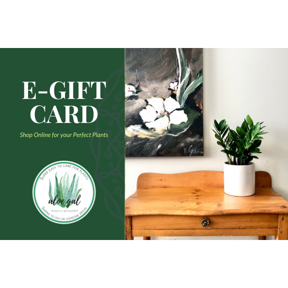 Aloe Gal Online Plant Shop Gift Card ($50-$100)