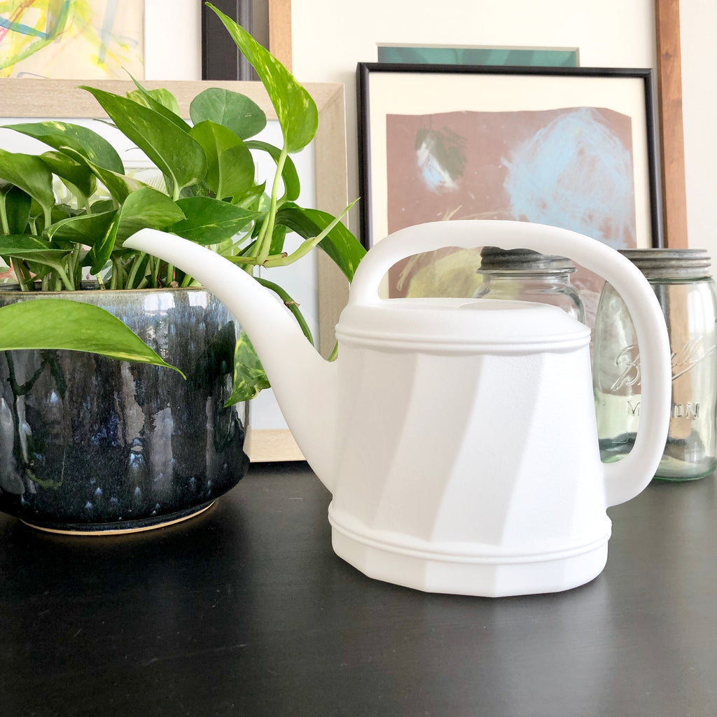 White Plastic Watering Can_Aloe Gal Plants & Decor