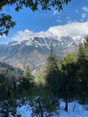 Mountain view from Dharamkot, Himachal Pradesh