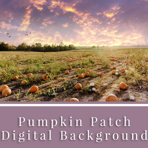 Pumpkin Patch Digital Background
