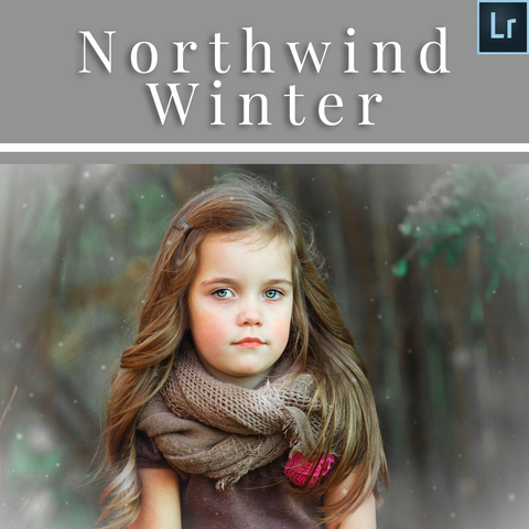 Northwind Winter Lightroom Presets