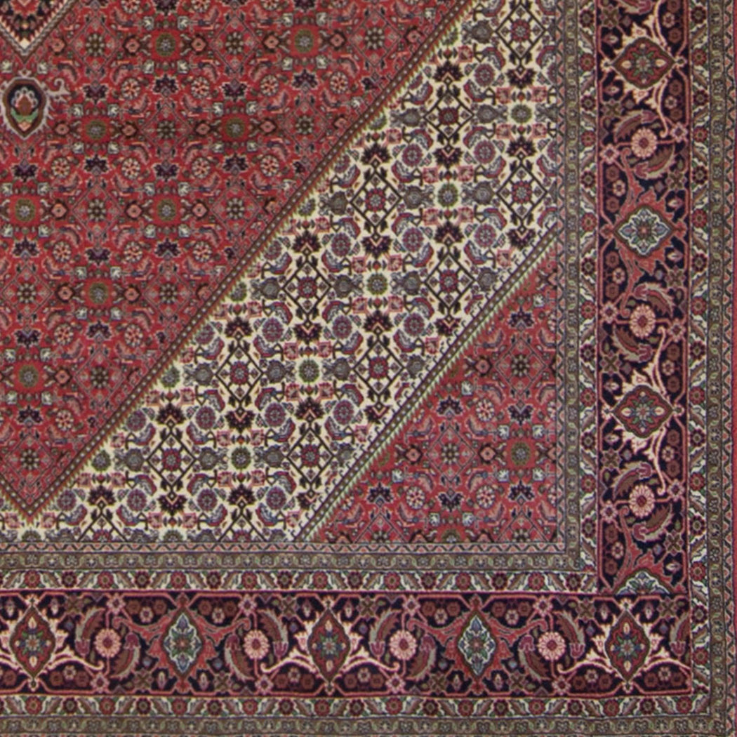 Super Fine Hand-knotted Persian Bijar Rug 250cm x 350cm - House Of Haghi