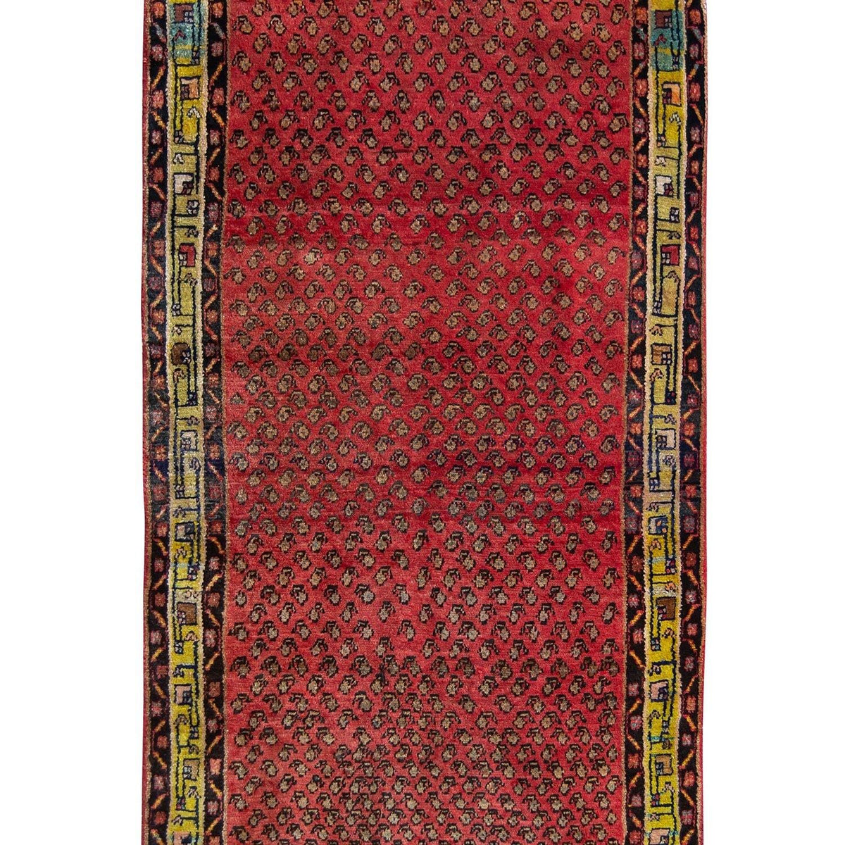 20784 Persian-Rug | House-of-Haghi | NewMarket | Auckland | NZ | Handmade Persian Rugs | Hand Knotted Persian Rugs