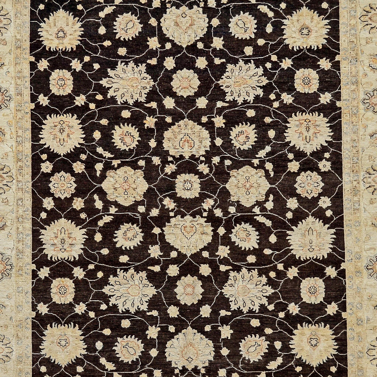 Fine Hand-knotted Transitional Wool Rug 244cm x 319cm Persian-Rug | House-of-Haghi | NewMarket | Auckland | NZ | Handmade Persian Rugs | Hand Knotted Persian Rugs