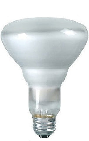 BR30 Incandescent Light Bulb