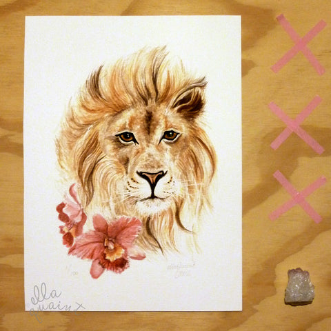 Lion and Orchids - limited edition