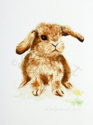 Little Lop