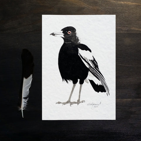 Magpie 2015 - an Original Indian Ink Illustration