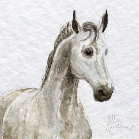 Misty Horse 2013 - an Original Watercolour Illustration