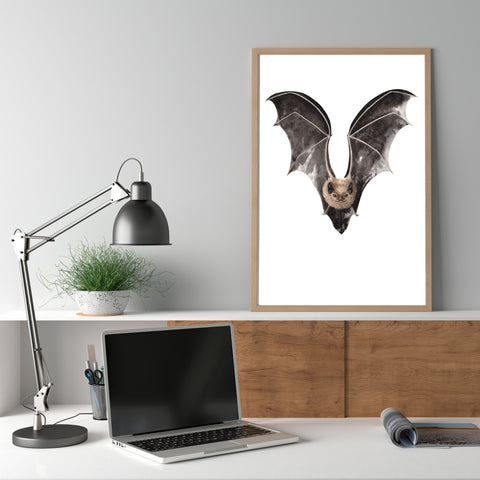 Long Tailed Bat / Pekapeka - an open edition Nocturne Print