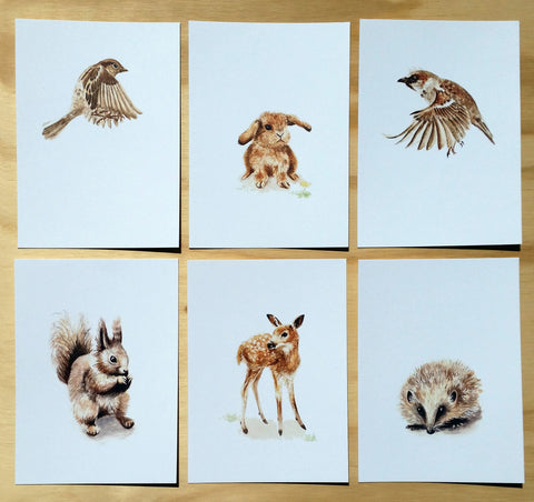 Mixed Woodland Creatures -  Postcards