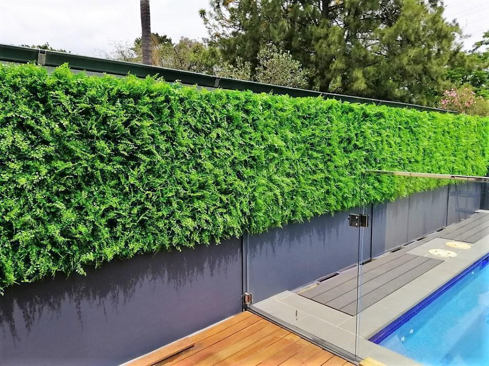 Artificial Green Wall along pool