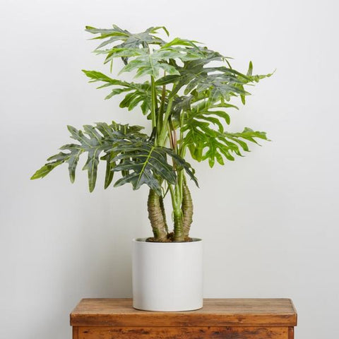 Artificial Happy Philodendron, Fake Foliage, Large Leaf