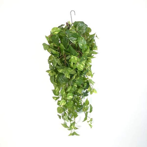 Artificial Hanging Plant, Pothos Devil's Ivy, Green Lantern Torpedo