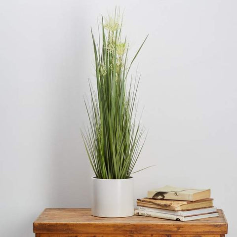 Potted IFR Grass Artificial Plant