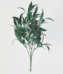 Brett Green Foliage