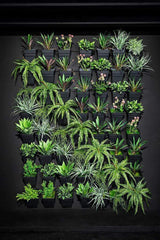 Multi Hang Wall Garden Living Gardens