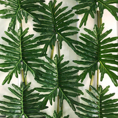 Philodendron Leaf 79cm Foliage