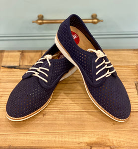Derby Punch French Navy