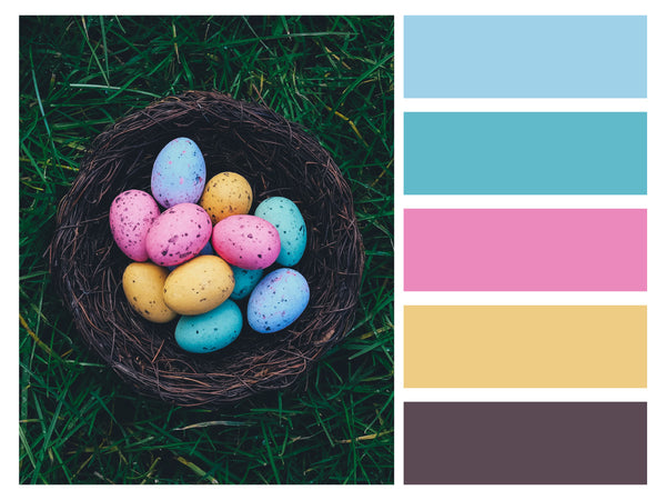 Color Palette Seasonal Event Easter Eggs Colorful