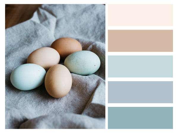 Color Palette Everyday Things Chic Natural Tone