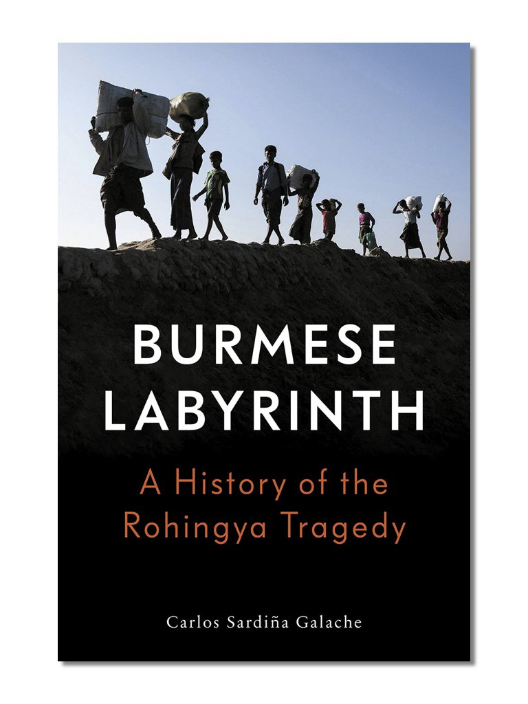 The Burmese Labyrinth