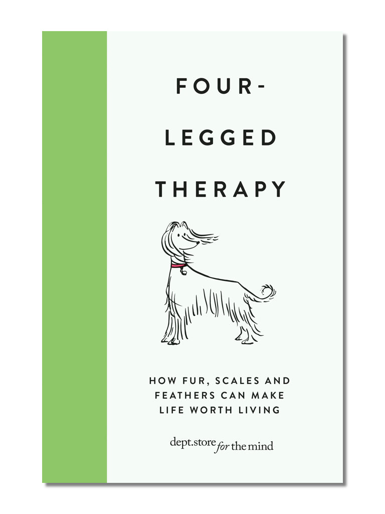 Four-Legged Therapy