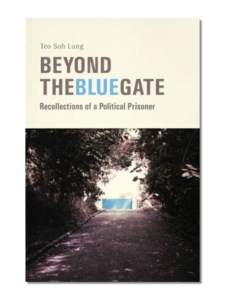 Beyond The Blue Gate
