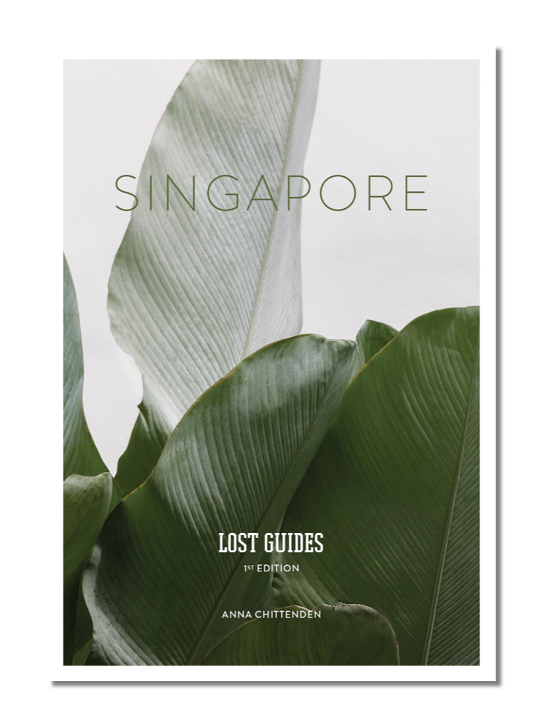 Lost Guides: Singapore