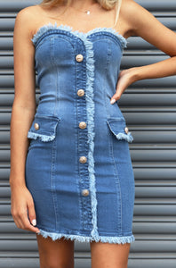 Roza Denim Dress
