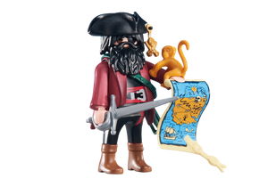 Playmobil 6433 Pirate Captain with Map Monkey Scroll Treasure map