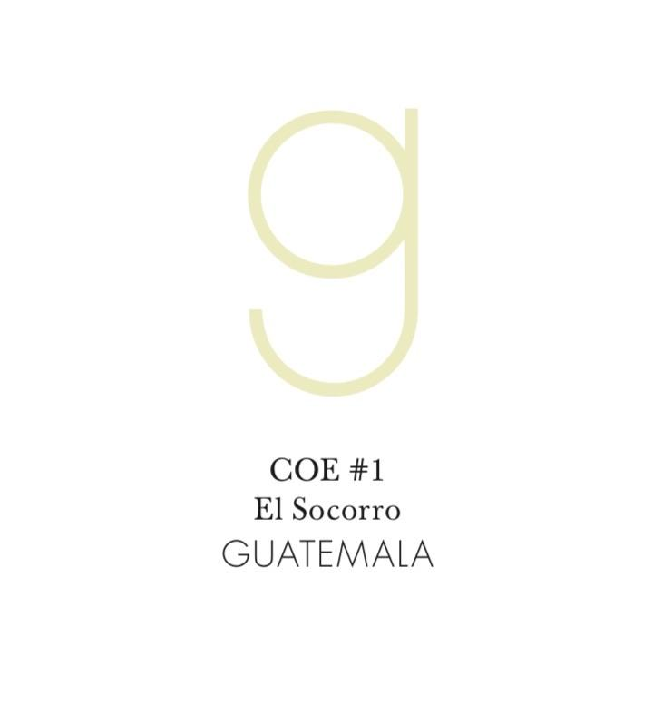 Guatemala COE #1 El Socorro Gesha 6oz Jar (Next Roast March 1)