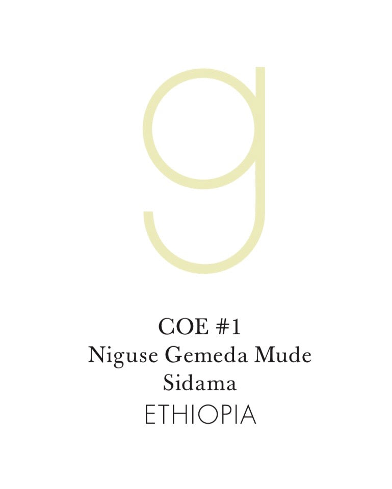 Ethiopia COE #1 Niguse Gemeda Mude 6oz Jar (pre-order, roasts on Feb 8)