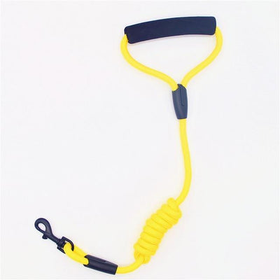 Strong Nylon Rope  Pet Leash