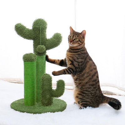 Cute Cactus Pet Cat Tree Toys with Ball Scratcher