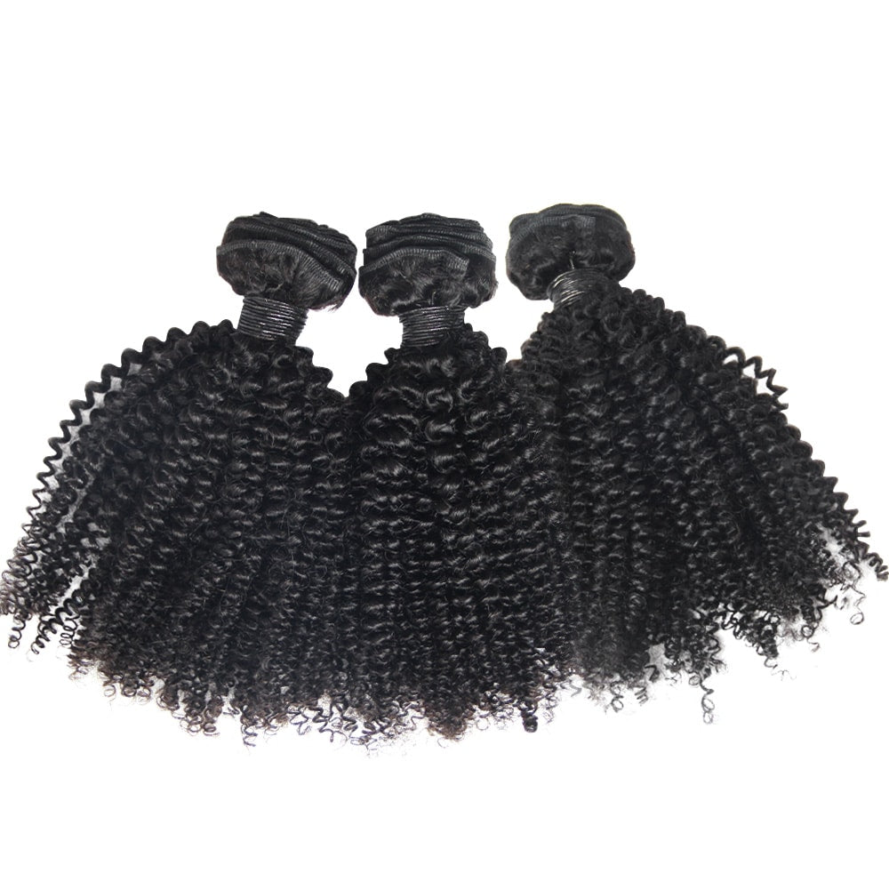 3 bundles brazilian kinky curly hair virgin hair from one donor-Loks - Lokshair