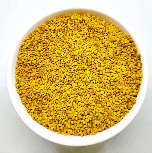Alfalfa Seed / अल्फाल्फा बीज / Medicago sativa - Nutrixia Food