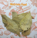 Parijatak Pan - Harshringar Patta - Paarijaat Leaf - Parijat Leaves - पारिजात  पत्ता - Harshingar Patta - Nyctanthes Arbortristis