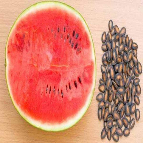 Watermelon Seed /   तरबूज का बीज / Citrullus lanatus - Nutrixia Food