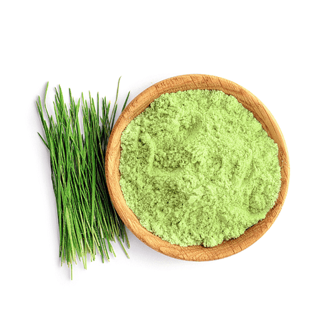 Weatgrass Churna / Wheatgrass Powder/  व्हीटग्रास पॉवर Wheat Grass Powder  Wheatgrass Powder