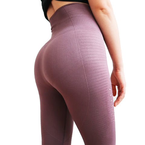 Energy Shark High Waist Seamless Leggings - Wearmeal