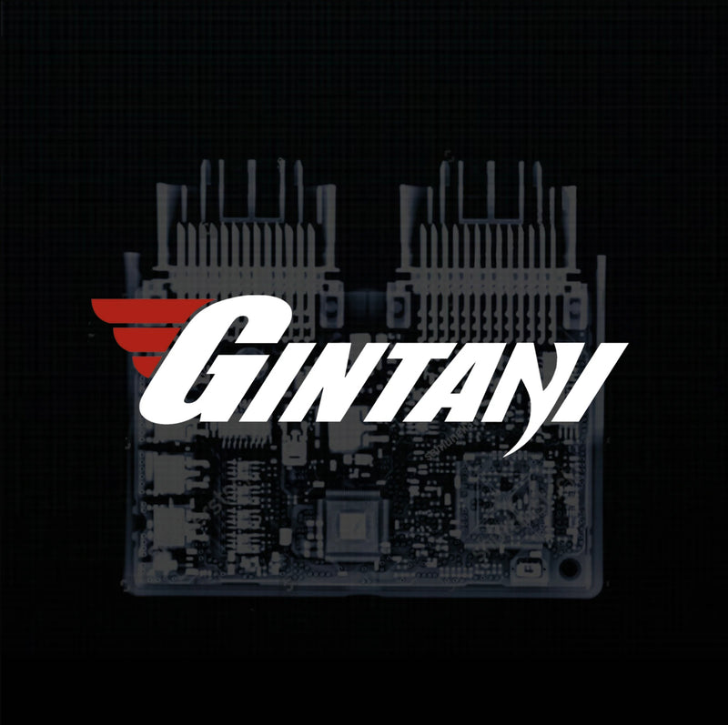 Gintani Mercedes Benz first-gen E63s AMG ECU Tune