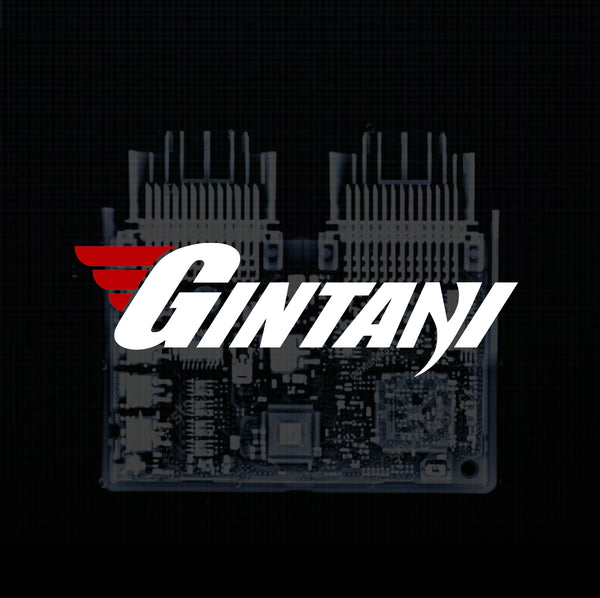 Gintani Audi RS5 ECU Tune