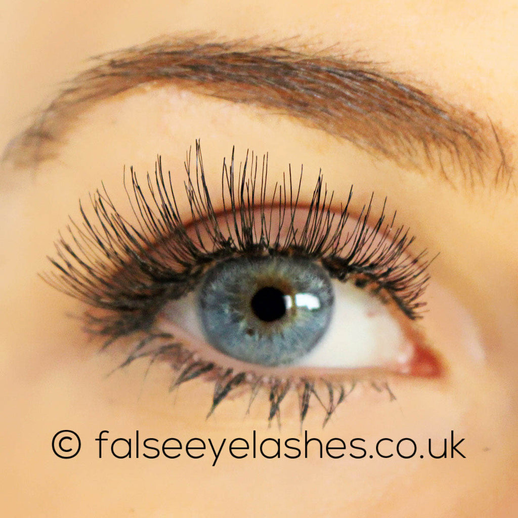 Red Cherry Lashes Style 43 Stevi False Eyelashes