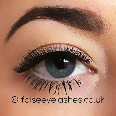 Ardell Flawless Lashes 800 - Front Shot